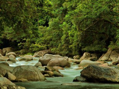 The best national parks in qld